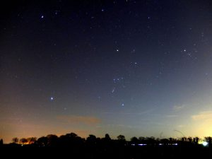 The Winter constellations Canis Major, Orion and Taurus