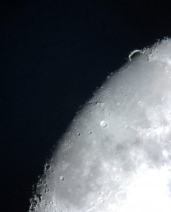 Sinus iridum (photo by Cath Adams)