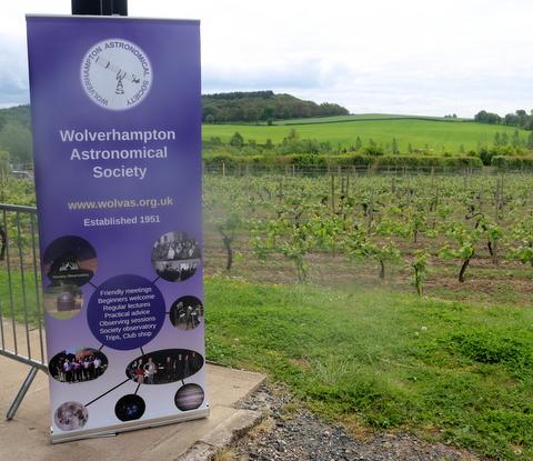 View of the vineyard (Richard Harvey)